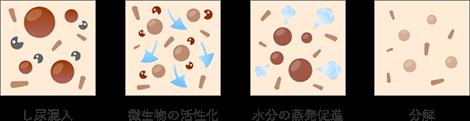 し尿混入~微生物の活性化~水分の蒸発促進~分解